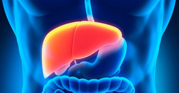 Alimentação Adequada para Hepatite B | Preço de Convênio Médico