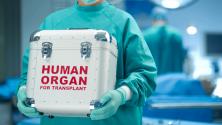 Hospital Albert Einstein convenios: Planos de saude que cobrem